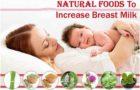 स्तन के दूध को बढ़ाने के लिए भोजन Food To Increase Breast Milk